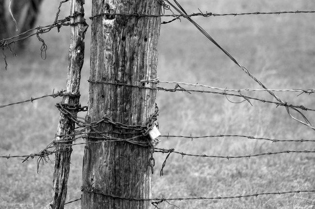 Wood wire lock
